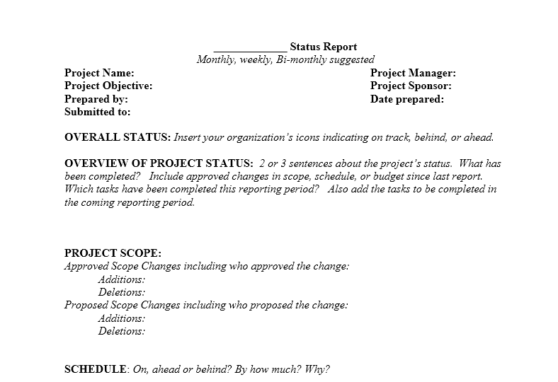 Project status report template 12
