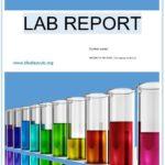 10 Free Lab Report Templates